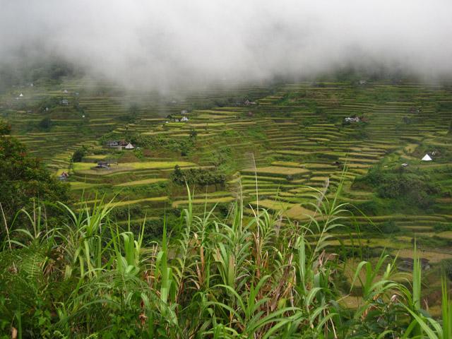 img 7107 Trek From Mayoyao to Batad (Part I)