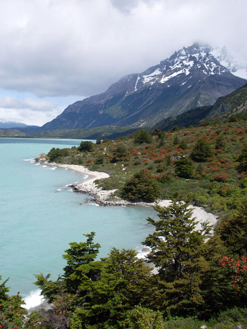 View in Patagonia
