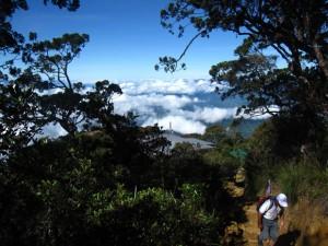 Mount Kinabalu view
