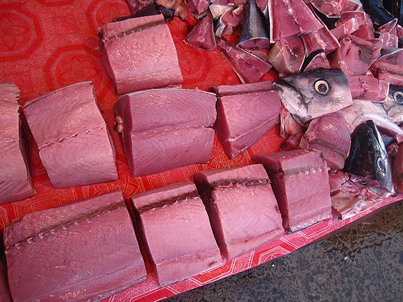 yellow fin tuna in Borneo