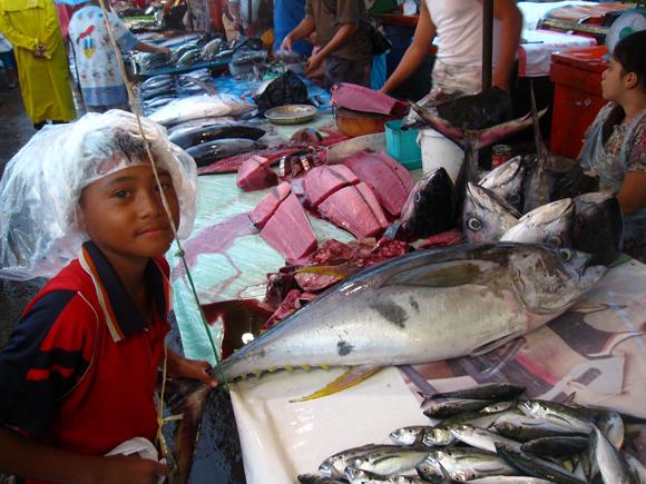 kota kinabalu fish market