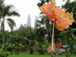 kl flower lake gardens