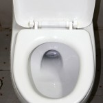 featured toilet 150x150 How to Use a Squat Toilet Like a Pro
