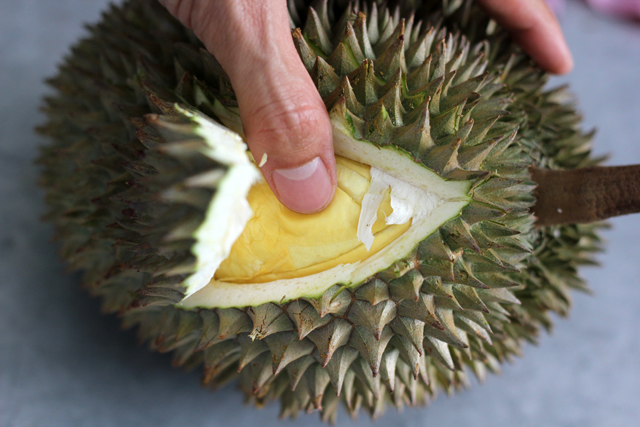 Press testing a kanyao (long stem) durian in Bangkok.