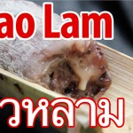 khao lam 150x150 VIDEO: Thai Pink Noodles (Yen Ta Fo เย็นตาโฟ)
