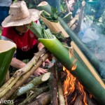 Cooking Food in Bamboo with the Akha Hill Tribe in Chiang Rai
