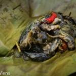 Mok Huak – Eating Tadpole Casserole (หมกฮวก) in Isaan